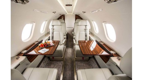phenom-300-interior-catering copy 1.jpeg